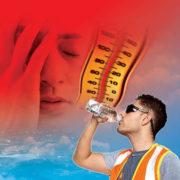 heat-stress-awareness